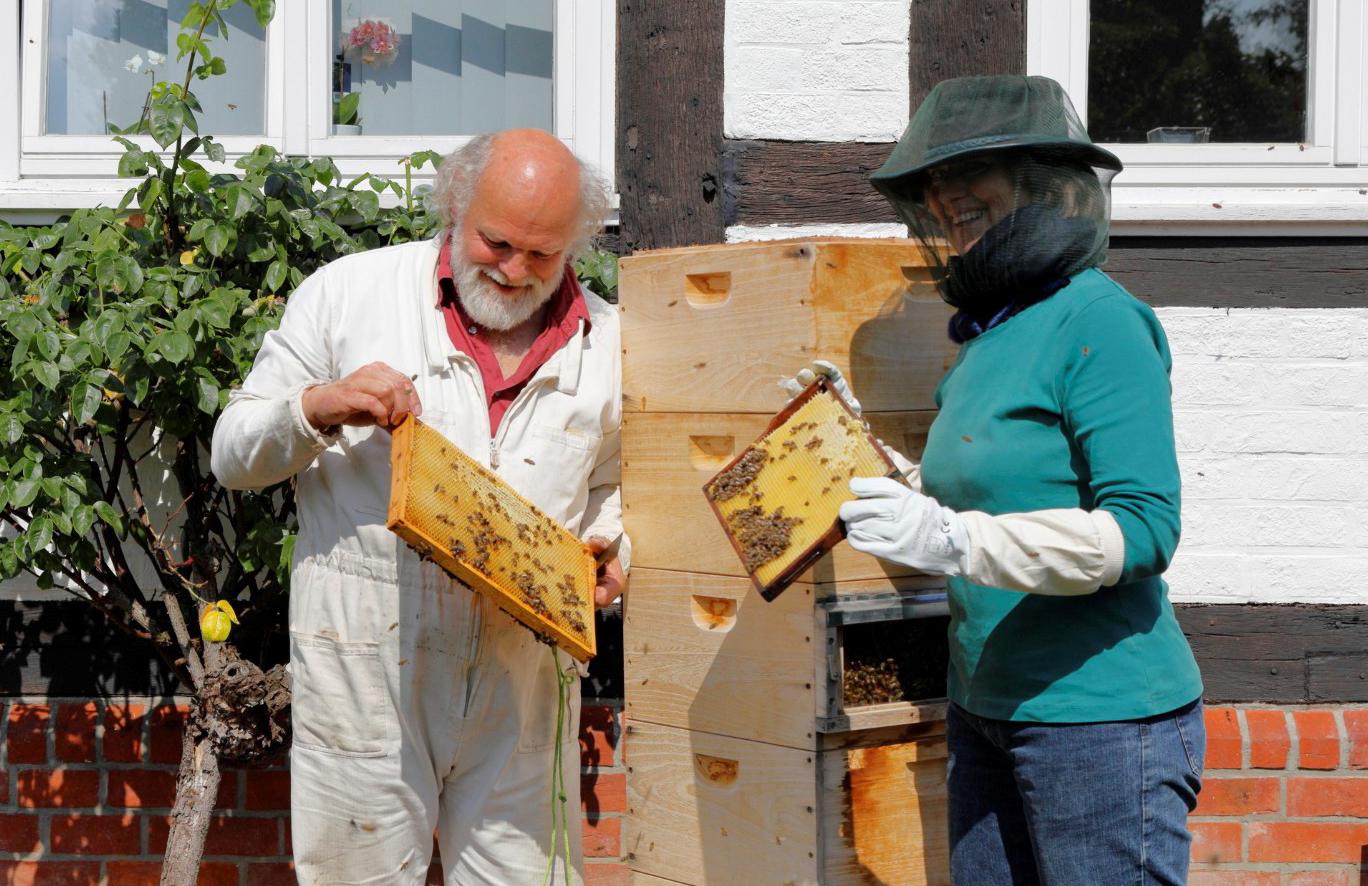 Bienen-Aktionismus der GroKo